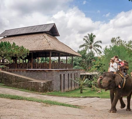 Elephant Trekking Beside Ayung River in Bali