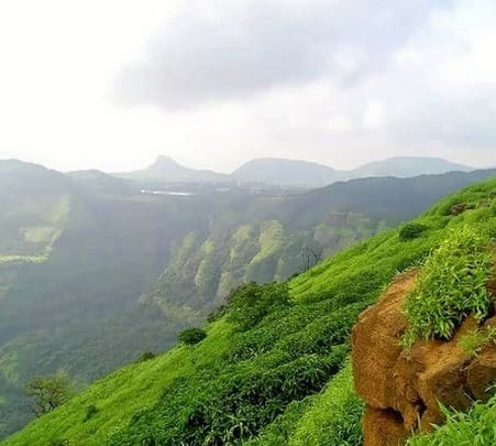 Wayanad Natural Forest Trail