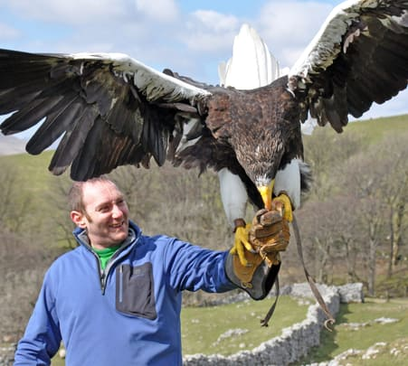 Mongolia Eagle Hunt and Sightseeing Tour