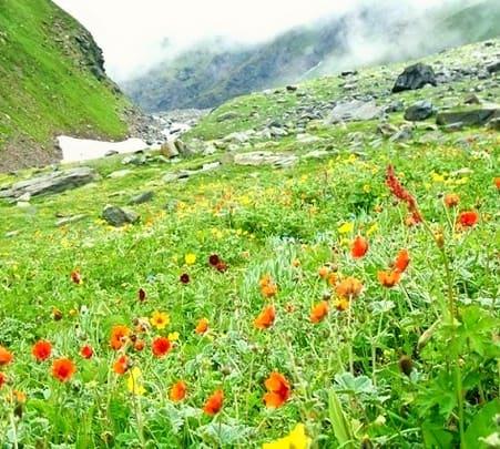 Bhaba Pass Trek 2017, Himachal Pradesh