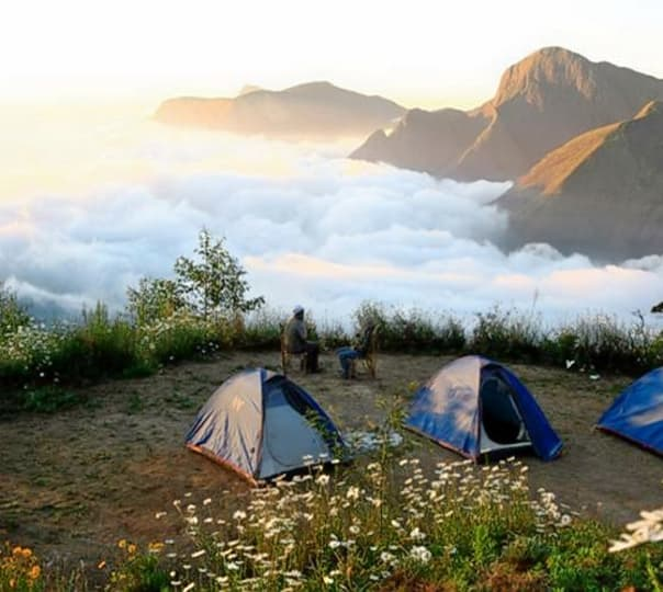 Top Station Camping with Campfire in Munnar