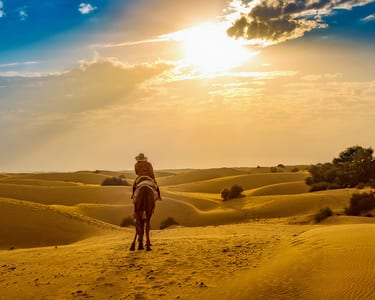 Winter Special: Delhi to Jaisalmer with Camel Safari, Flat 20% off