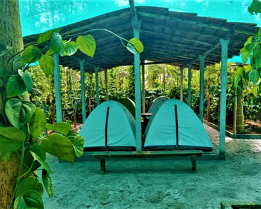 Camping in the Middle of Nature, Sakleshpur