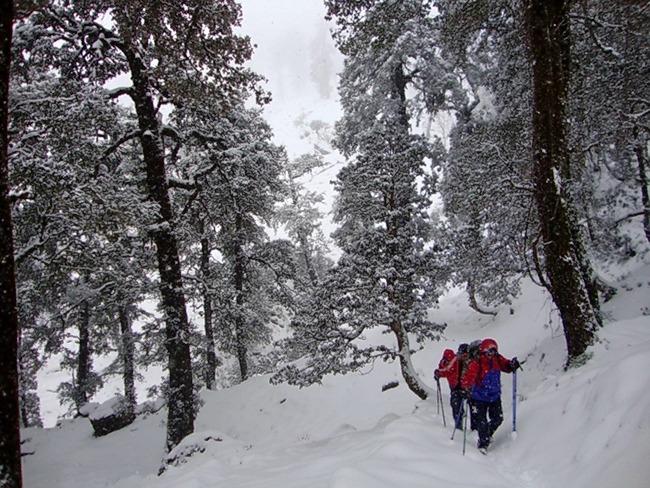 M_auli_and_gurson_snow_trek_2.jpg