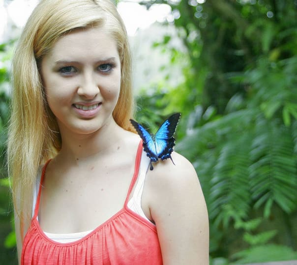 Australian Butterfly Sanctuary Tour