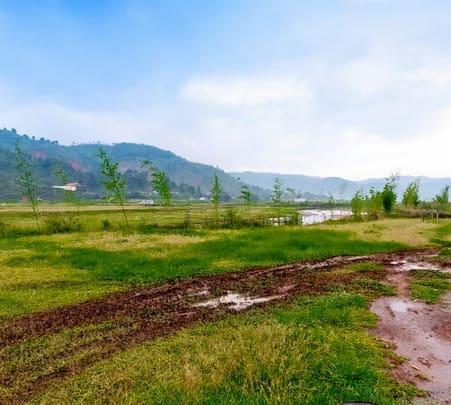 Trip to Mawlongbna Village in Meghalaya
