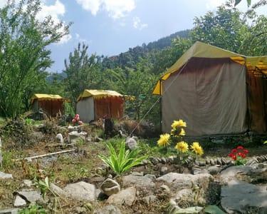 Riverside Adventure Camping in Jibhi