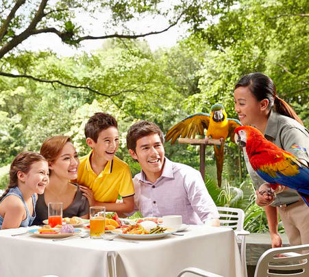 Lunch with Parrots in Singapore Flat 19% off