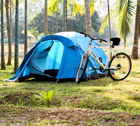 Adventure Camp Amidst Palm Tress near Mysore