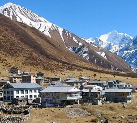 10 Days Trekking at Langtang Valley