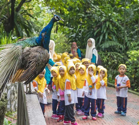 Kl Bird Park with Butterfly Park & Garden Tour Flat 10% off
