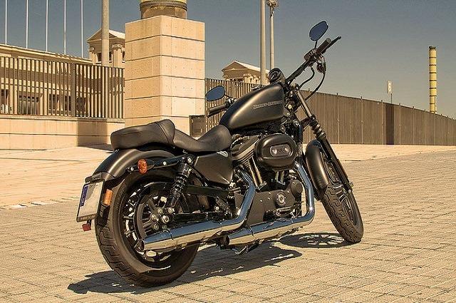 Harley_davidson_883_iron_6.jpg