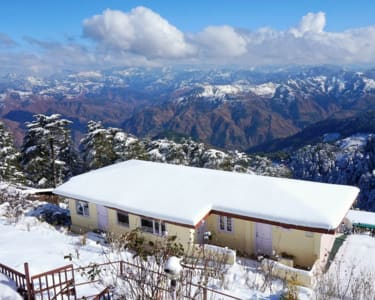 Hilltop Homestay in Cedar Forest, Shimla