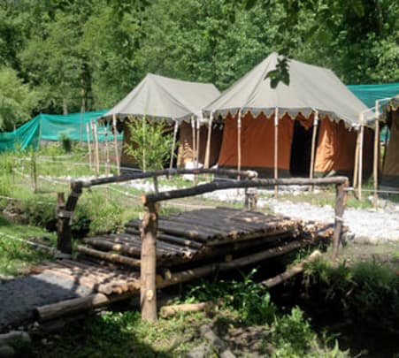 Camping Experience with Bbq & Bonfire in Manali