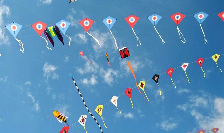 Image result for kites festival jaipur food