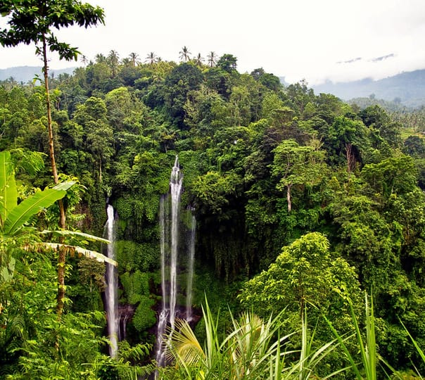 Sekumful Waterfall Trekking near South Bali