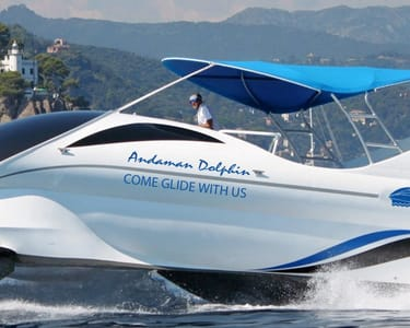 Dolphin Glass Bottom Boat Ride in Andaman