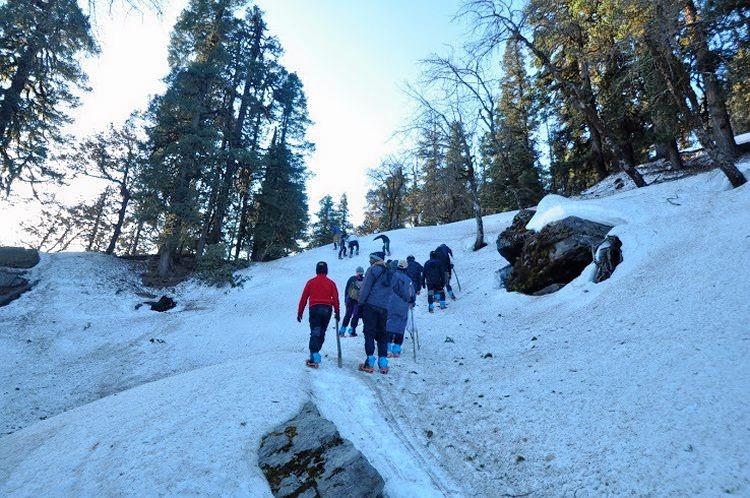 M_snow_trek_to_kedarkantha__uttarakhand_4.jpg