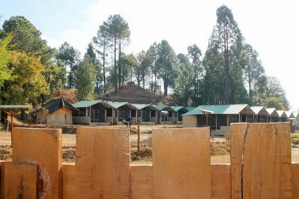 1587554263_camp-redwoods_(2).jpg