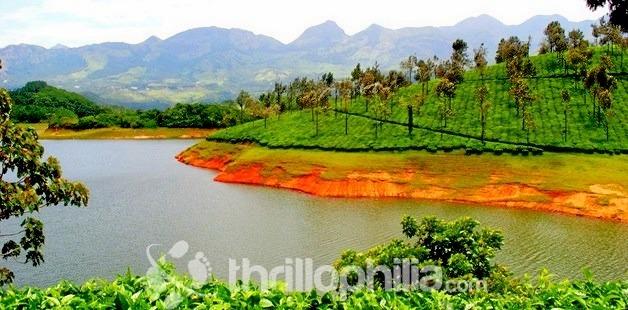 Munnar_lake_kerala.jpg