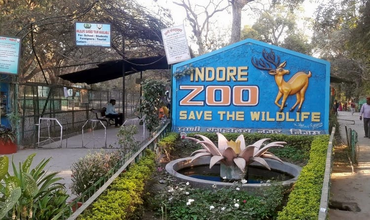 if you are a nature and wildlife enthusiast indore zoo owing to the wide range of exotic wildlife it houses deserves to be on your bucket list
