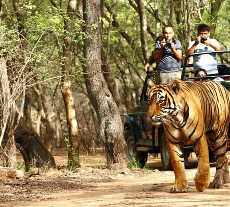 Gwalior to Indore Adventure Tour