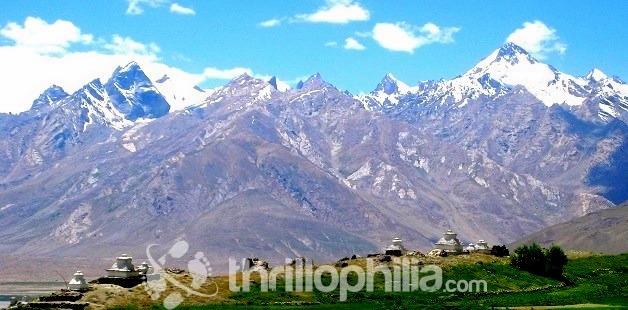 Karsha-2_ladakh.jpg
