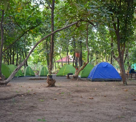 Camping Experience at Barwah, near Indore