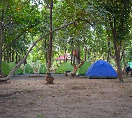 Camping Experience at Barwah, near Indore