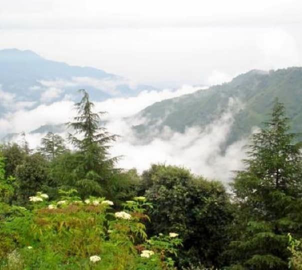 Day Tour of Chail in a Car