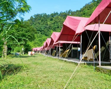 Jungle Camping in Rishikesh With Rafting (Flat 31% Off)