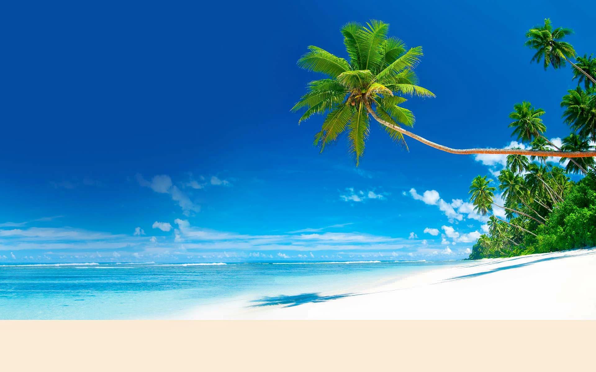 Relax at Pantai Indah