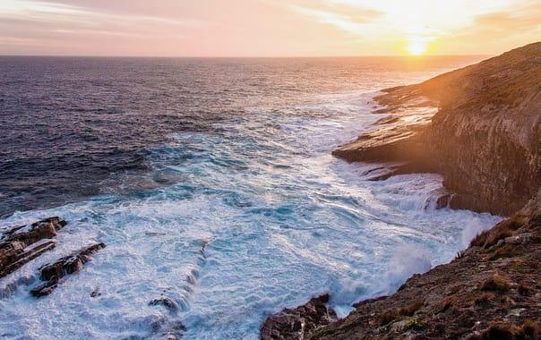 1481522538_kangaroo-island-1402955_960_720.jpg