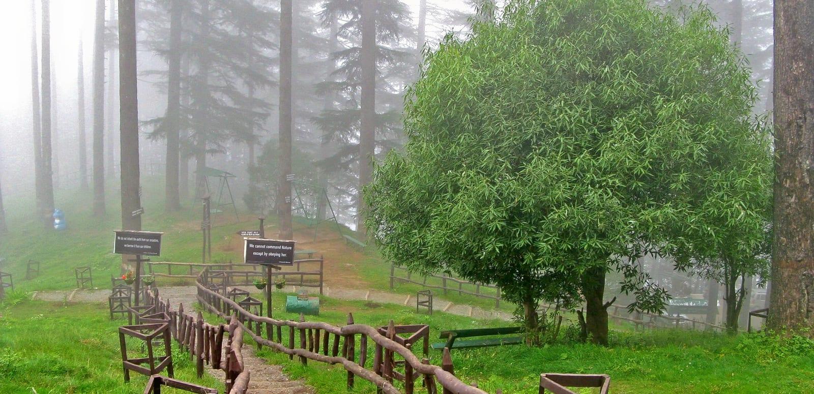 1492603821_dhanaulti_eco_park.jpg
