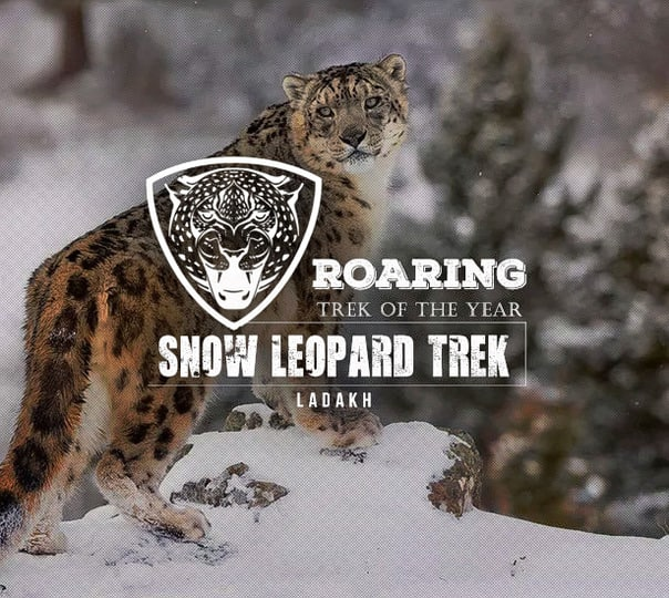 Snow Leopard Trek with Chadar Walk, Ladakh