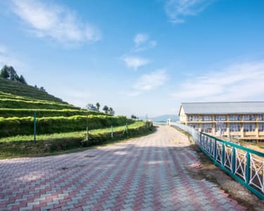 Countryside Homestay in Shimla