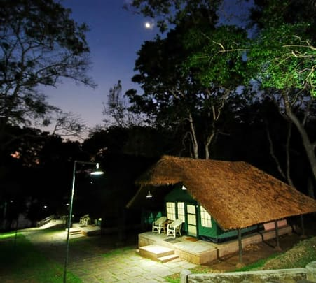 Night Stay in Kabini River Lodge