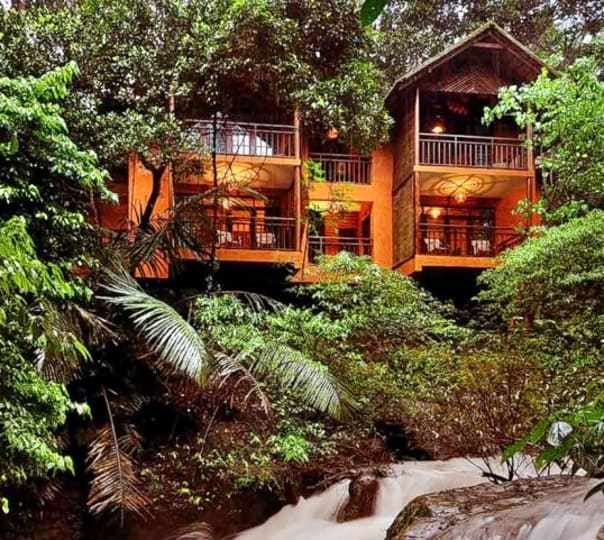 Wayanad Tree House Stay Experience
