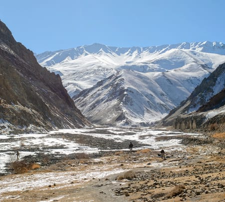 Snow Leopard Trek ( Winter Expedition)