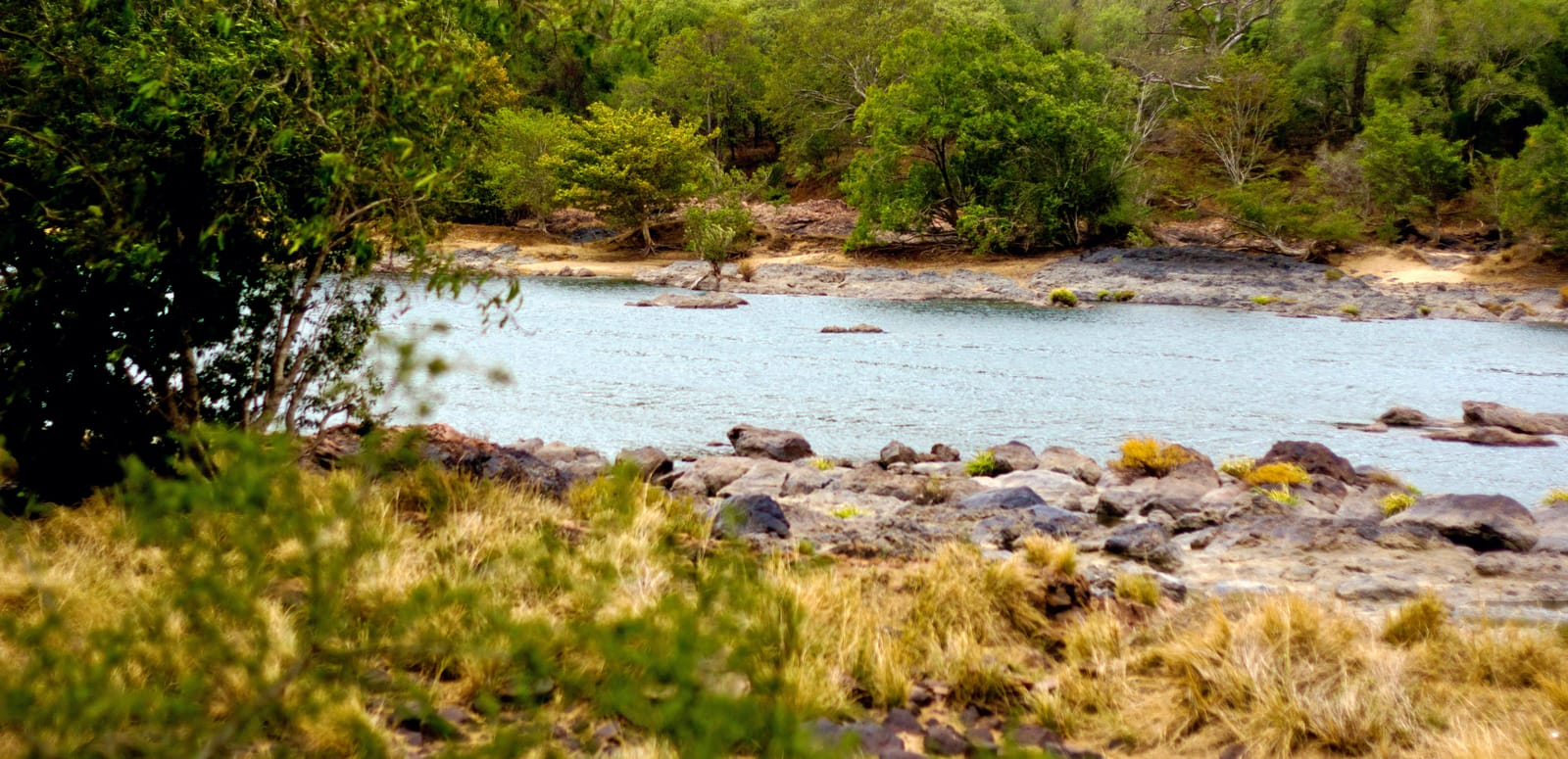 1492596914_enroute_galibore_fishing_camp_-_cauvery_river.jpg