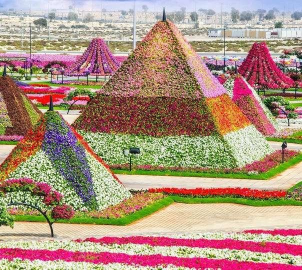 Trip to Dubai Miracle Garden