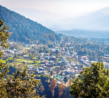 Zip-lining in Dharamshala Flat 15% off