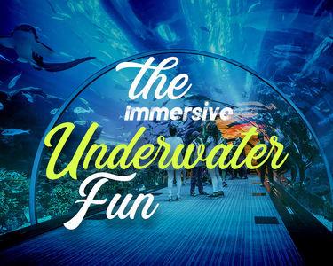 Dubai Aquarium & Underwater Zoo Combo Ticket - Flat 25% off