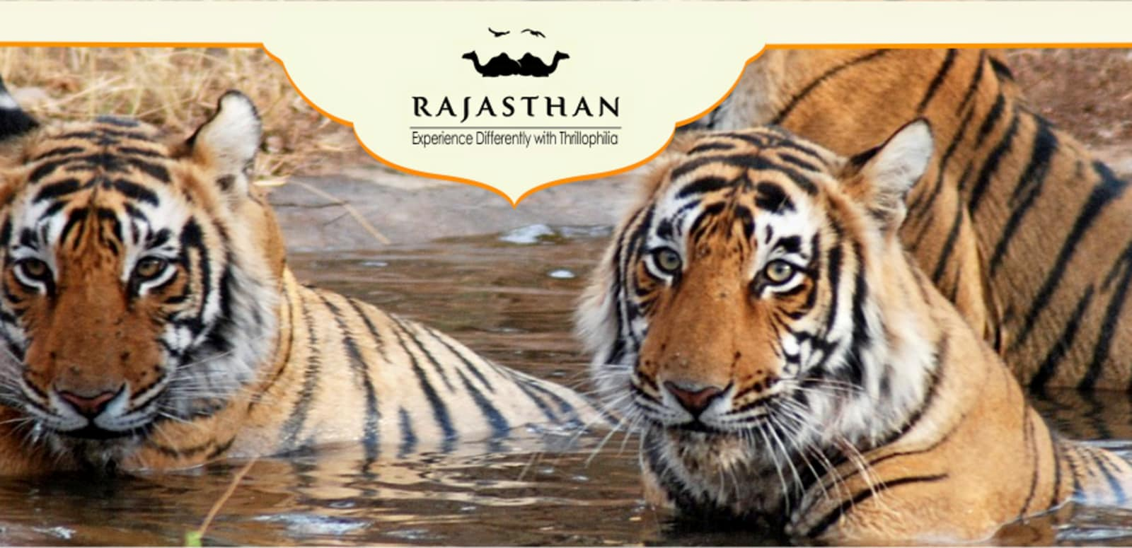 essay on sariska national park