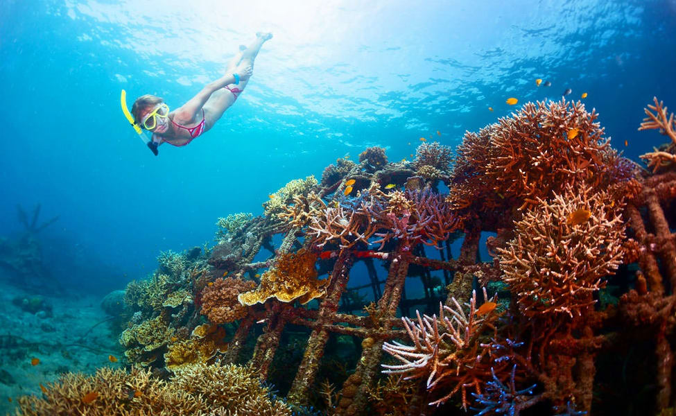 Speed Boat Tour And Snorkeling In South Bali Thrillophilia