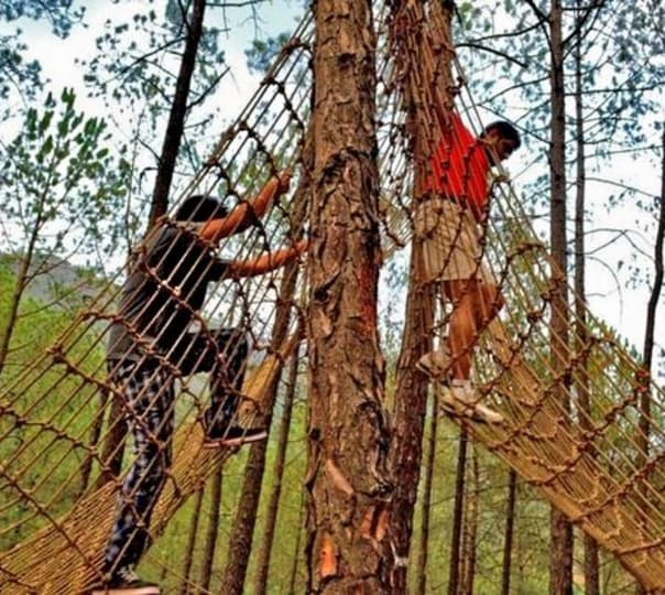 Commando Net Adventure Activity In Munnar