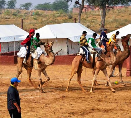 Camel Safari with Dinner, Jodhpur-flat 28% off