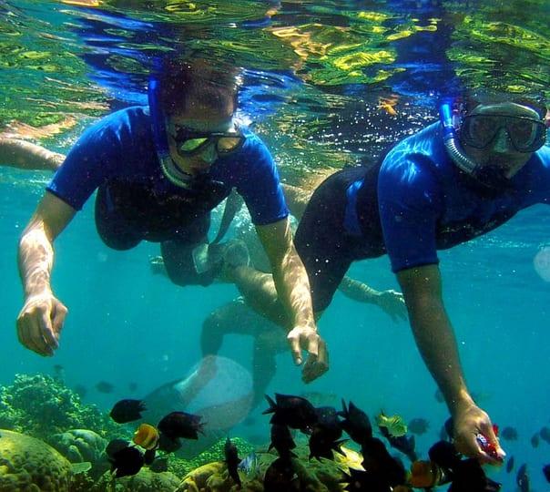 Snorkeling Tour in Mirissam in Sri Lanka