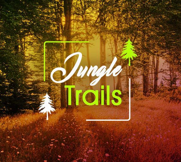 Adventure Jungle Stay in Dandeli