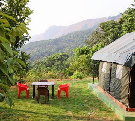 Camping with Jungle Walk in Coorg- Flat 18% off